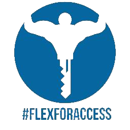 Flex for Access logo